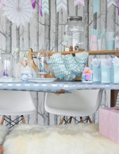 Frozen Chevron Divine Party-2