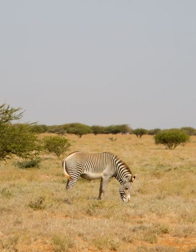 Julie_Gallagher_Kenya_Samburu-67a