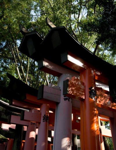 Julie_Gallagher_KYOTO-20